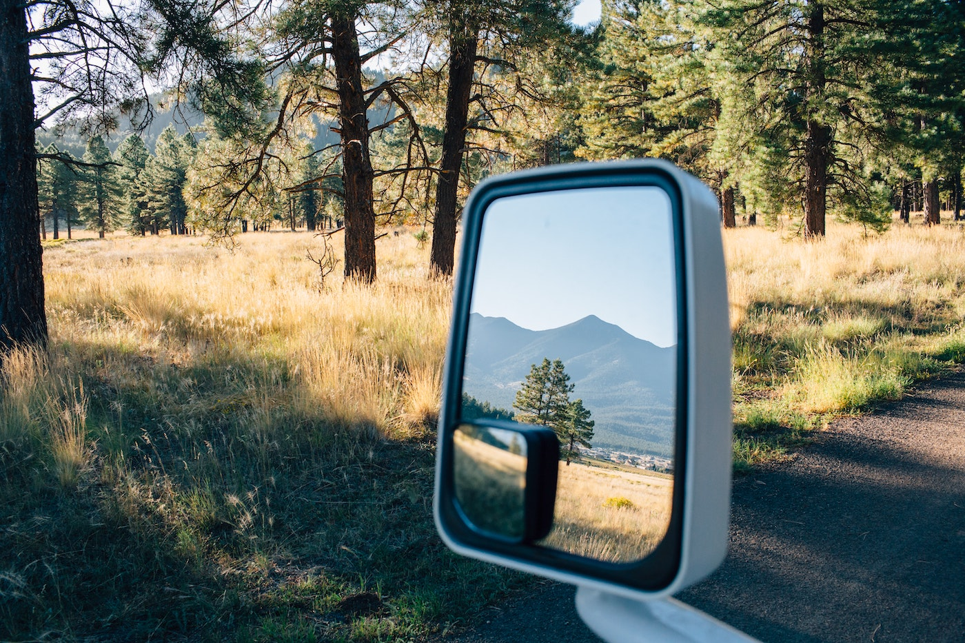Side view mirror with reflection of forest and mountains